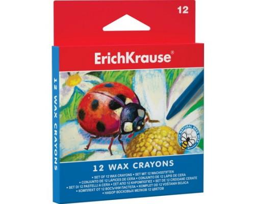 Мелки восковые 12 цветов Erich Krause
