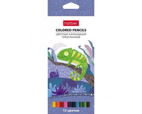 Карандаши цветные 12 цветов COLORA трехгранные