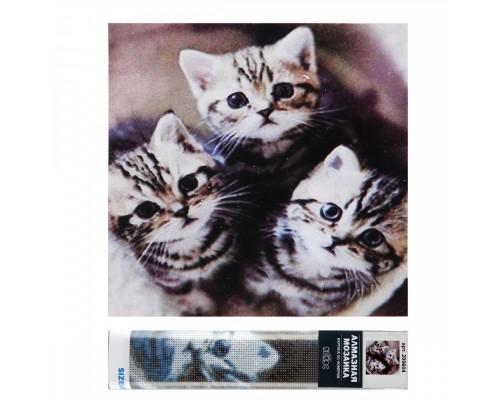 Алмазная мозаика 30*30см КОКОС Три котенка полная выкладка холст без подрамника 209604
